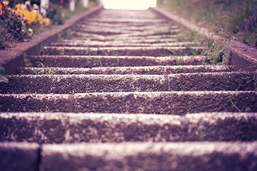 公園に続く石の階段のフリー写真素材(商用可)