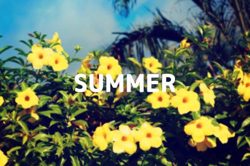 文字入れ素材『SUMMER』その3のフリー写真素材(商用可)