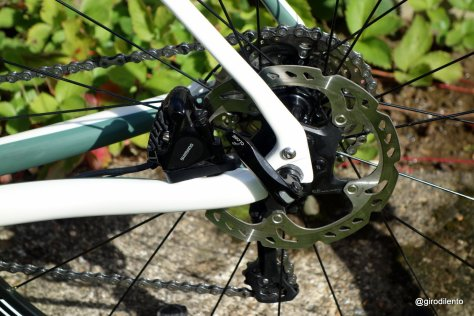 Neat flat mount rear disc brakes - blend in well. 160mm rotors