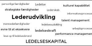 lederudvikling-the-leadership-capital-index-gitte-mandrup-2016