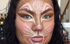 cat-contouring