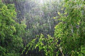 fotokto.ru погода дождь