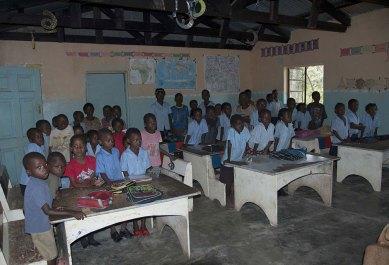 Chimfunshi Wildlife Orphanage