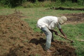 Ghana-Farmer.preview