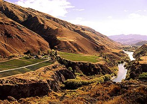 otago-valley