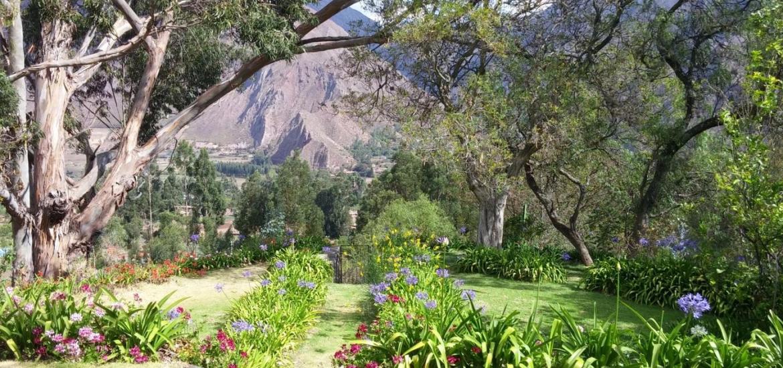 Huayoccari garden Sacred Valley