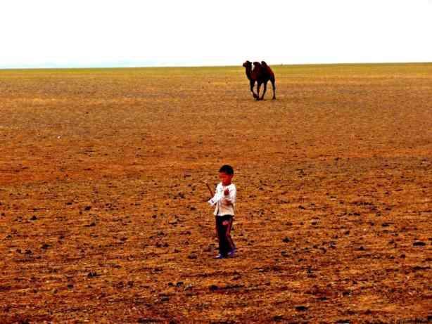 Steppe back in time in Mongolia