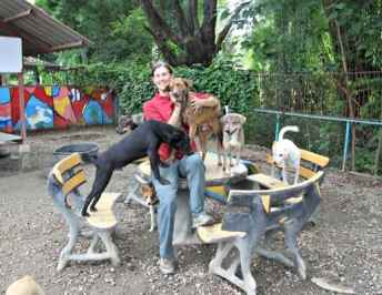 Care for dogs shelter in Chiang Mai