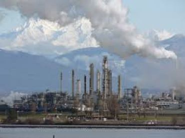 Did China's Crude Oil Demand Rise?
