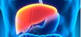 Biomarkers of liver fibrosis detecting with electrochemical immunosensor on clinical serum