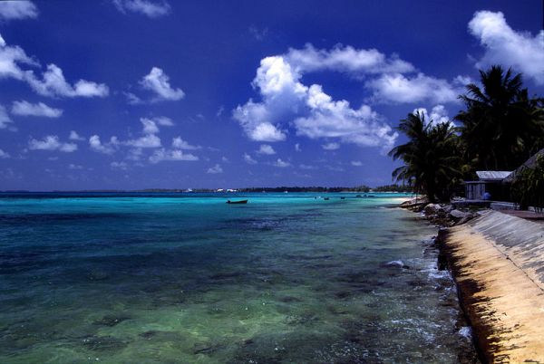 A beach at Funafuti atoll, Tuvalu, on a sunny day. Photo by Stefan Lins.