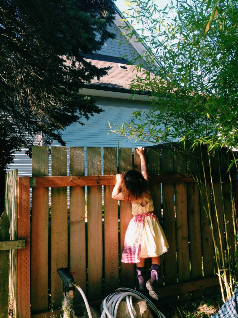Lucy climbing