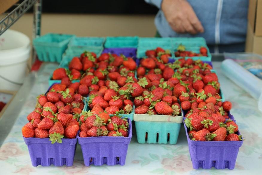 potato salad- strawberries