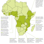 Click to see larger image.  Map showing just a few examples of land grabbing across Africa.  Source: Friends of Earth Europe.