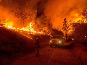 wildfire Morales Fallon