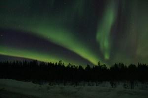 aurora2 Morales Fallon