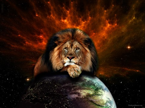 Tribe of judah lion 3 1024x768 Lost Tribe of Judah Found: The Bedas