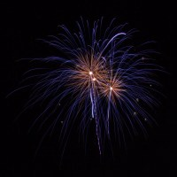 Massachusetts Fireworks: purple with a gold heart