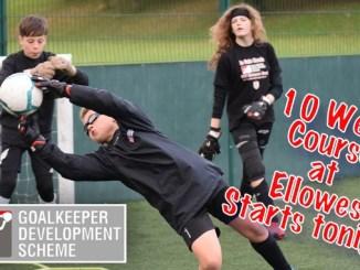 Ellowes 10 Week Course copy