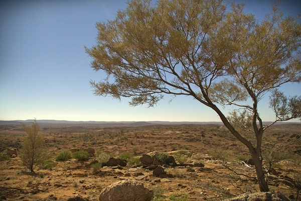 outback new south wales near Broken Hill