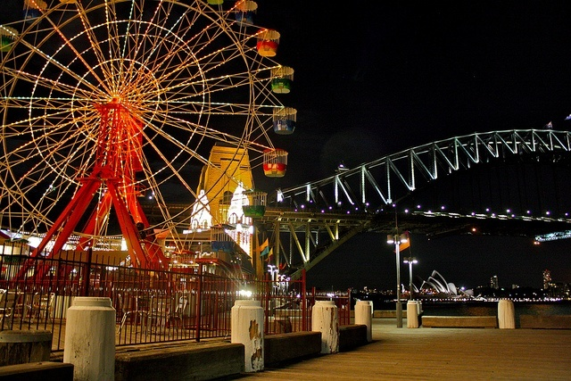 Explore sydney at night