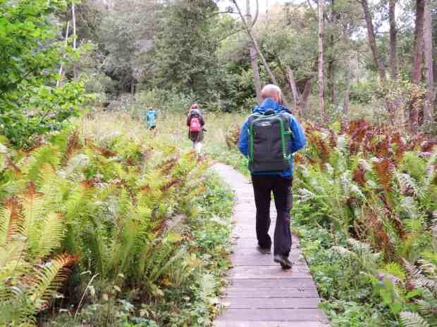 gogirlrun_estland_outdoor_wandern_lahemma-nationalpark_24