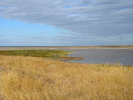 Parco Nazionale dell'Ucraina Priazovskii