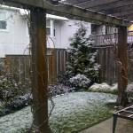 Snow in Portland 4