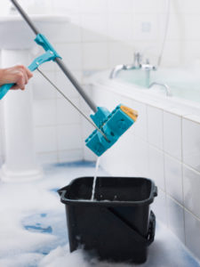 Cleaning Service Boise ID