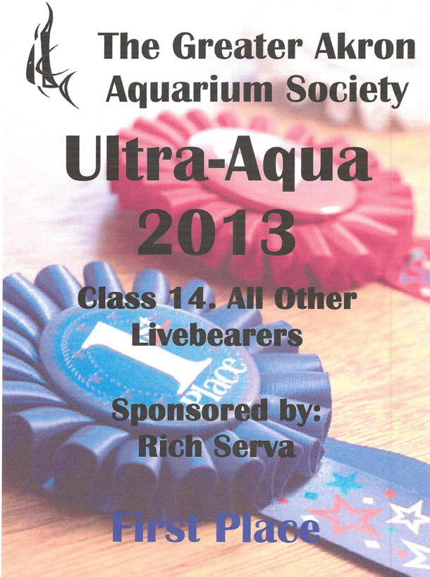 The Greater Akron Aquarium Society First Place Award