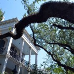 Anne Rice's house, amid the oaks of the Garden District. (Photo via Flickr user Angela N.)