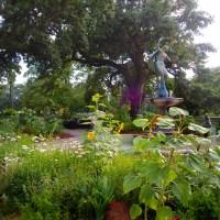 Flora, fauna, and fountain in Audubon Park. (Photo: Anna-Marie Babington)