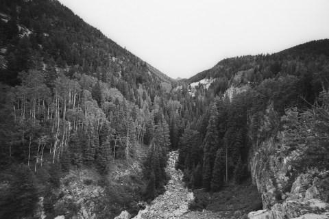 Yule Marble Quarry - Leica M2 - 15mm Voigtlander - Adox 20