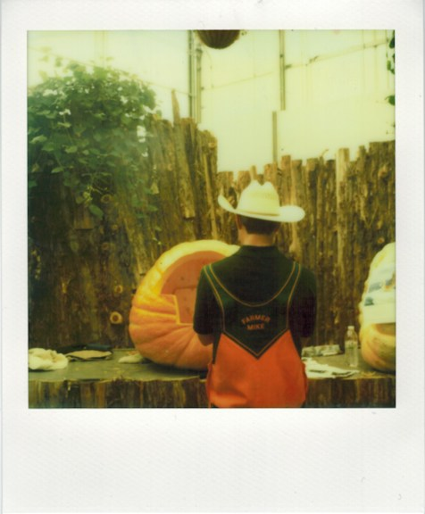 Photo: Christian Oliveira - Polaroid SX-70 - Impossible Project PX-70 CP Film