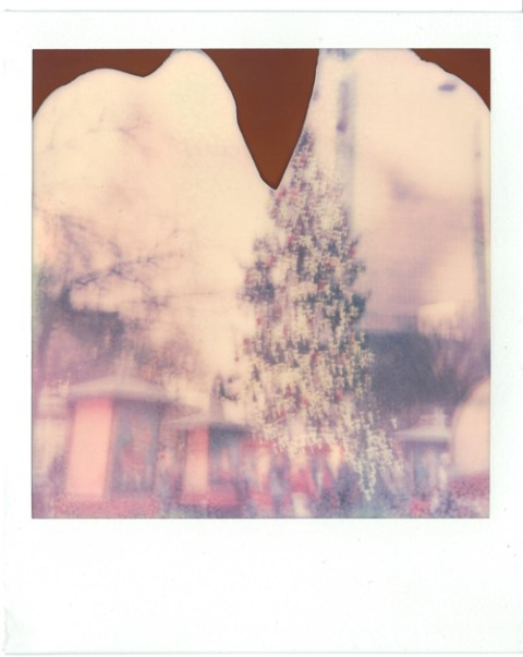 Photo: Callum Vinson - Polaroid Rainbow SX-70 - EXPIRED PX-70
