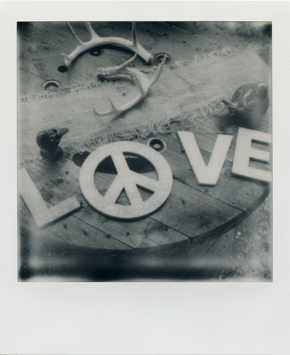 Polaroid SX-70 Sonar - Impossible Project PZ-600 + ND4 Filter