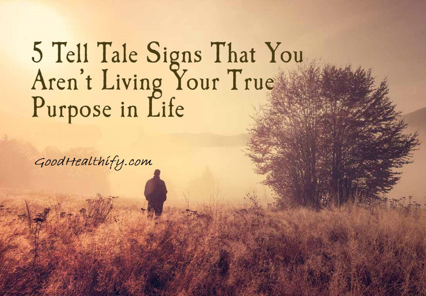 5 Tell Tale Signs That You Aren't Living Your True Purpose in Life