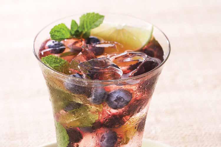 blueberry mojito website