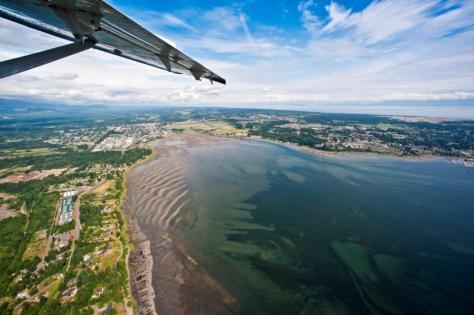 Harbour Air - aerial estuary
