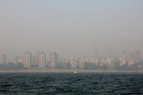 Forest Fire Haze