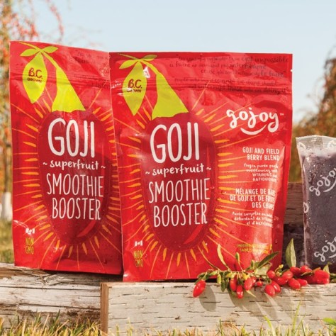gojoy berry smoothie booster blend 600x600