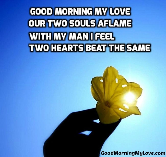 Good Morning My Love In French To A Guy : Cute love quotes from the heart with romantic images