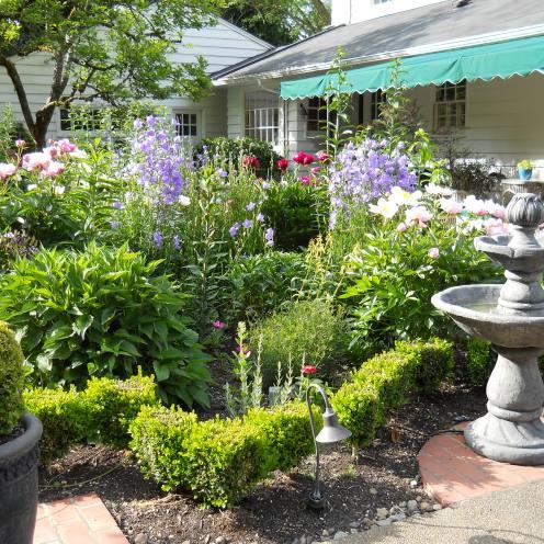 Lovely garden!