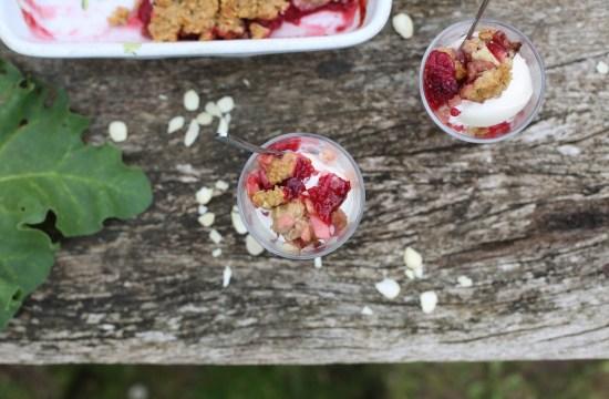 rhubarb raspberry rye crumble