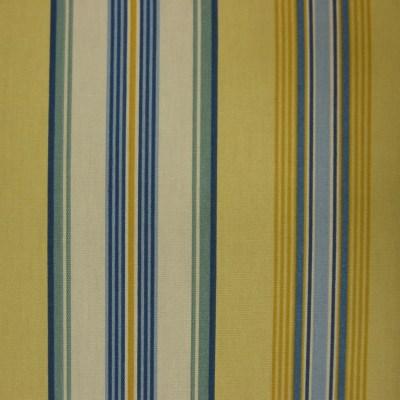 Maranda Stripe