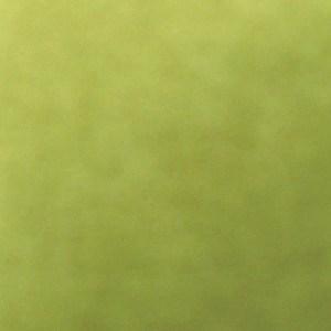 Neutron Lime Futon Cover
