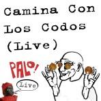 Camina Con Los Codos -- Live (mp3)
