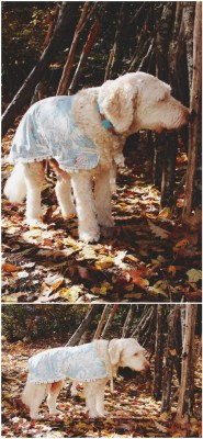 little-miss-lovely-large-dog-coat-jacket-diy-cute-labradoodle-tutorial-sewing-002