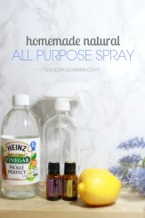 Homemade Natural All Purpose Cleaner