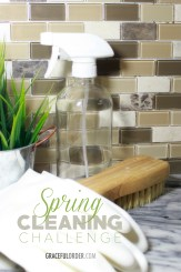 Spring Cleaning Challenge COVER